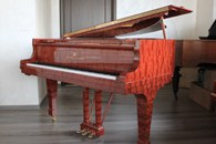 Steinway & Sons - 2011, �593256