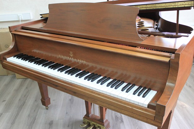 Steinway & Sons - 1985, №495015