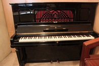 Steinway&Sons - 1923, №227900